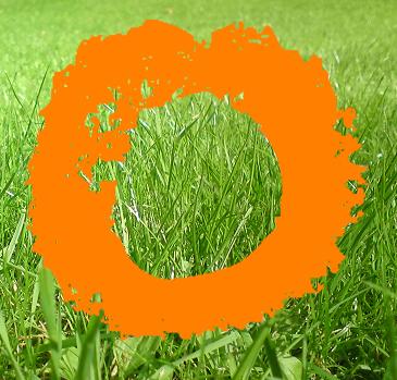 O on grass